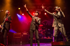 The Selecter LIVE 2015 (c) Robert Stainforth